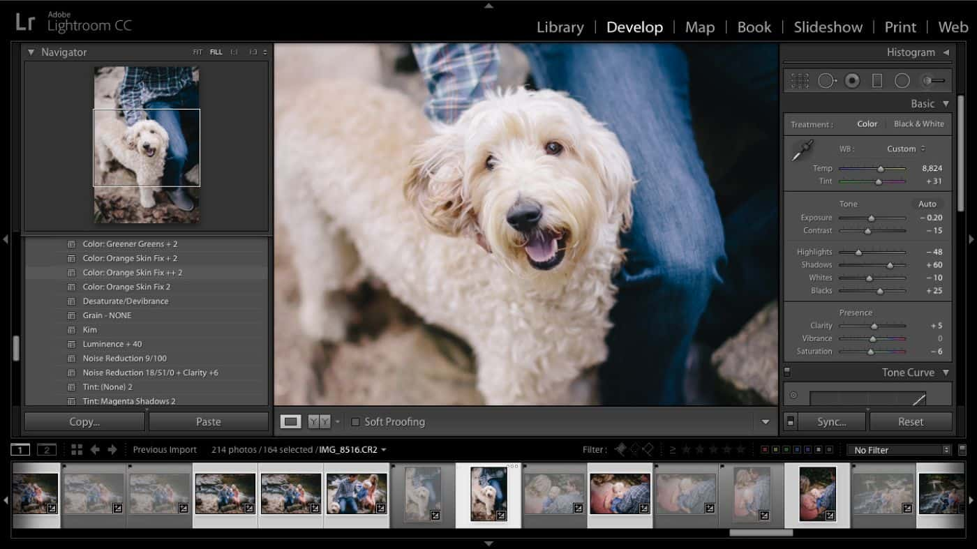 A screenshot of a photographer's open Lightroom Develop module, with photos ranked for faster editing