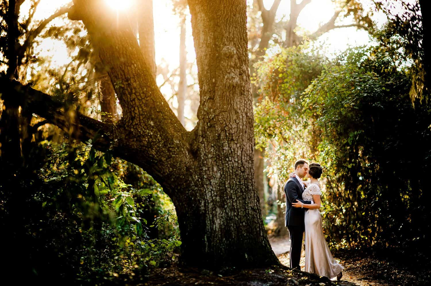 Is Táve Right for You? How To Market Smart & Track Your Cash with the Best Photography Studio Management Software: Bride and groom kiss delicately under a massive old oak tree.