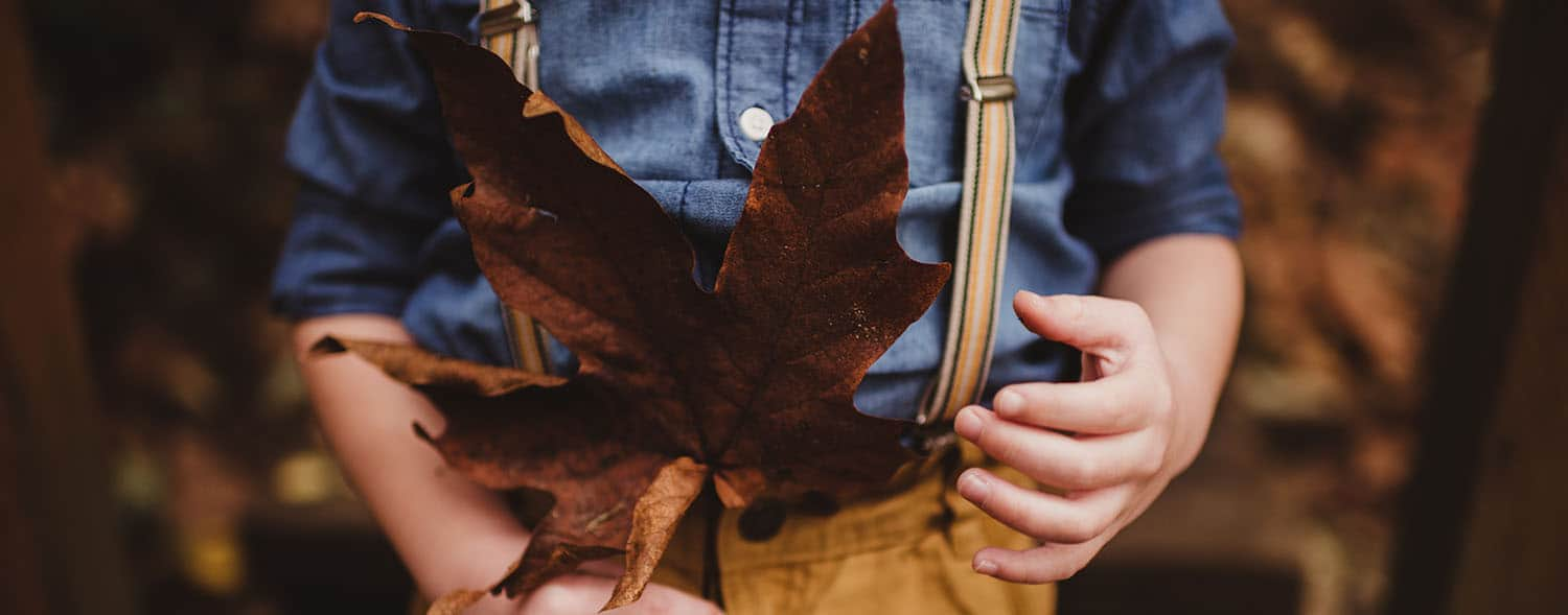 child holding a giant maple leaf