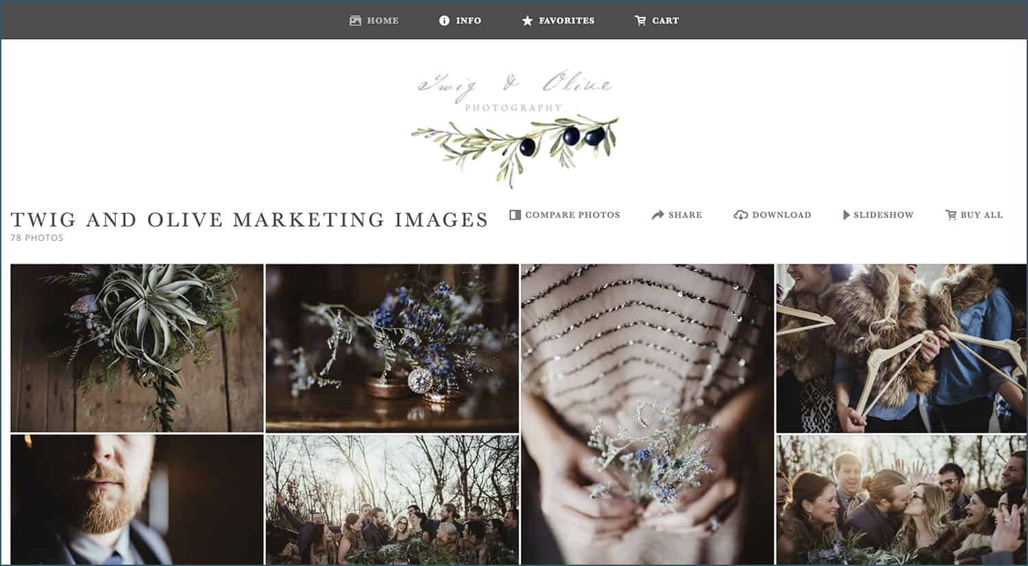Twig & Olive knows how to sell more photos: with a beautifully customized ShootProof shopping cart!
