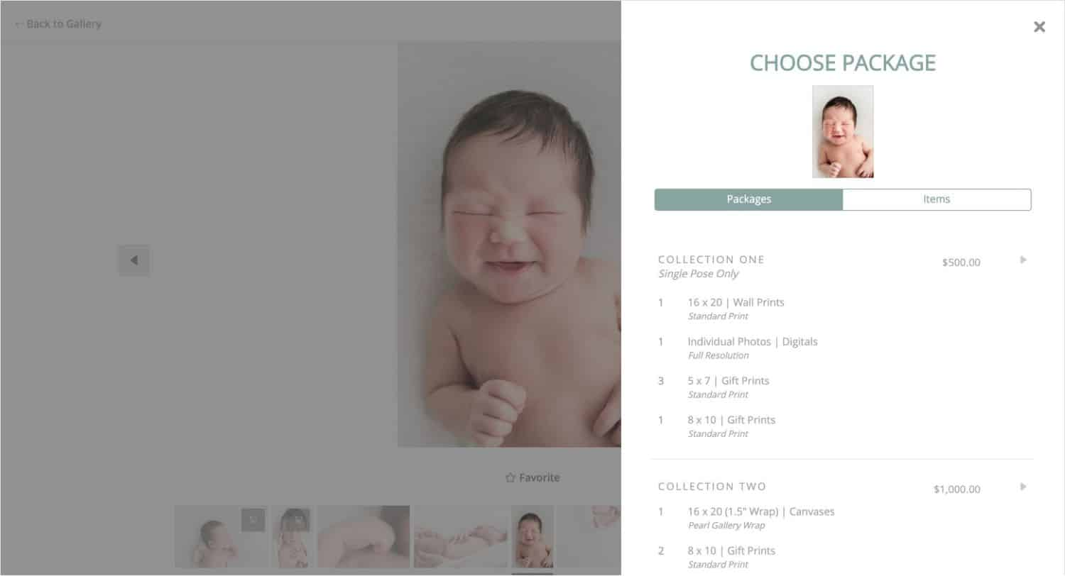 Alison Winterroth's clients can select and customize their own photography packages through ShootProof's Package Builder.