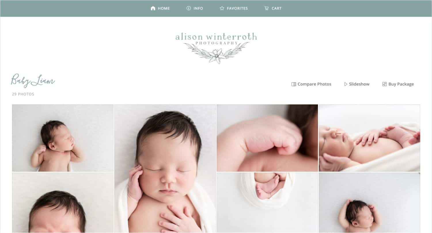 Alison Winterroth's ShootProof Gallery Helps Her Sell Photography Packages Online!