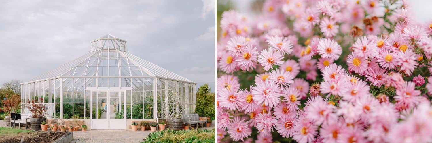a greenhouse is pictured beside an image of wildflowers