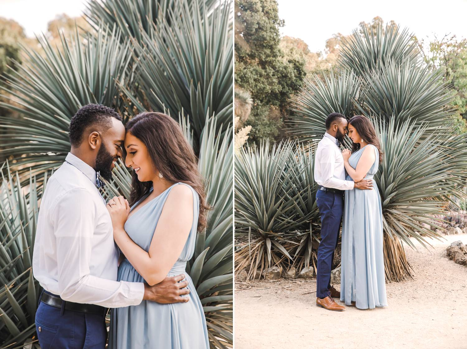 A man and woman stand forehead-to-forehead in front of a huge aloe plant
