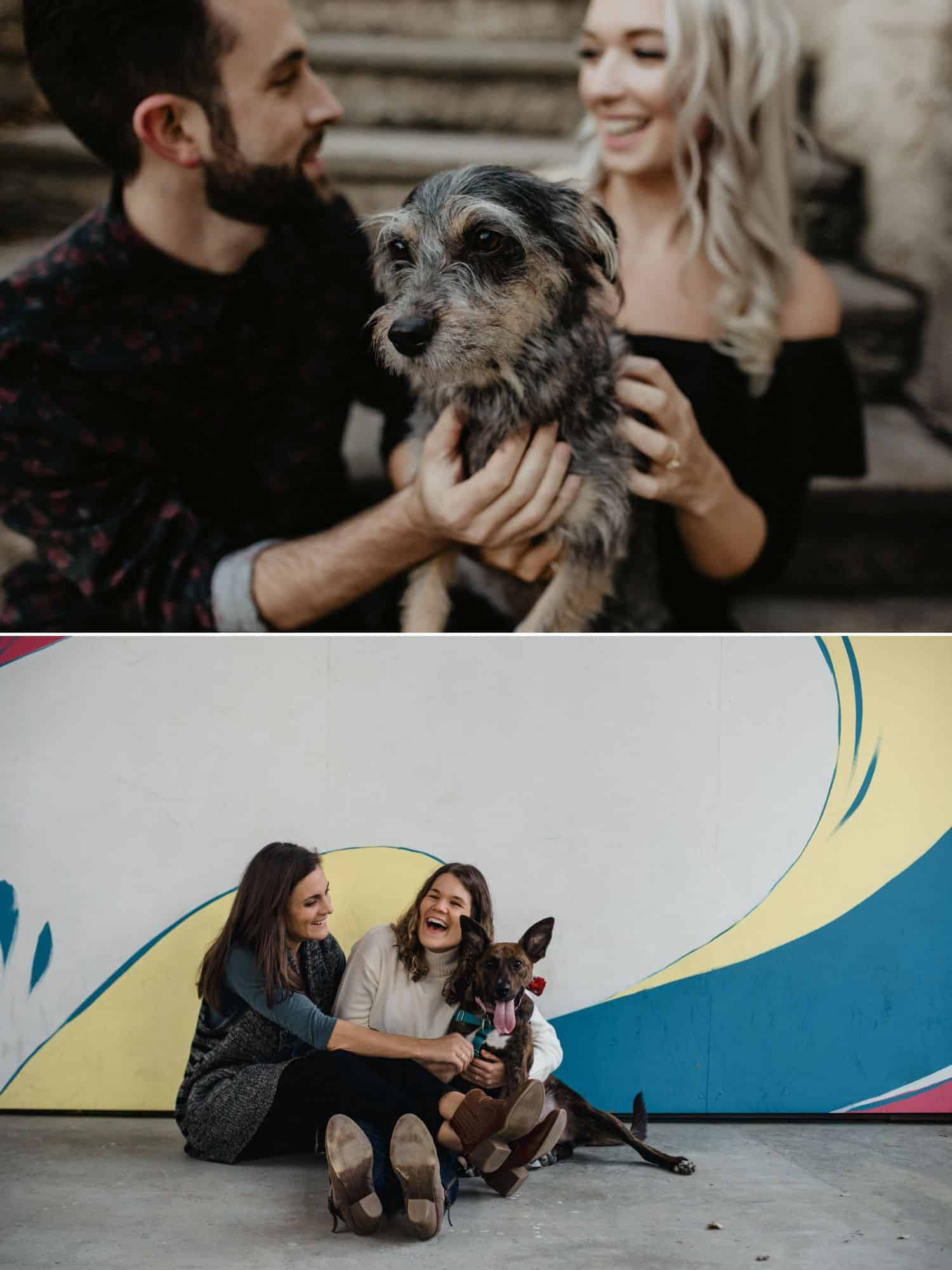 Include precious pups and cute kitties in your next engagement photo session
