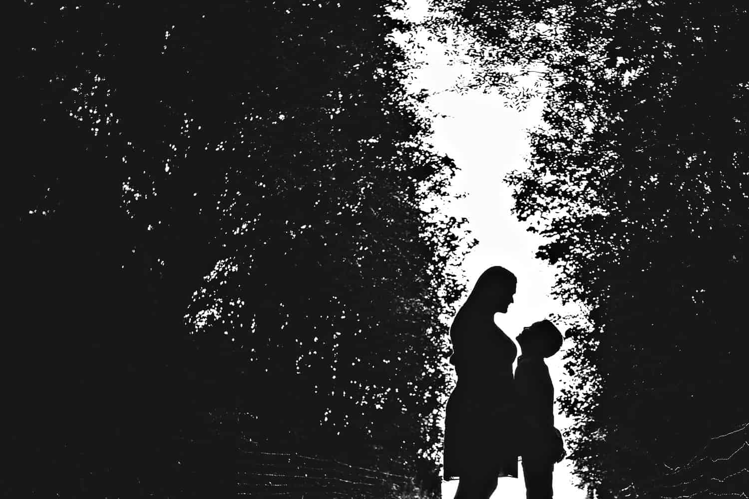 Black and white silhouette of a pregnant mom looking down at her young son. They stand against a white sky, surrounded by large trees.