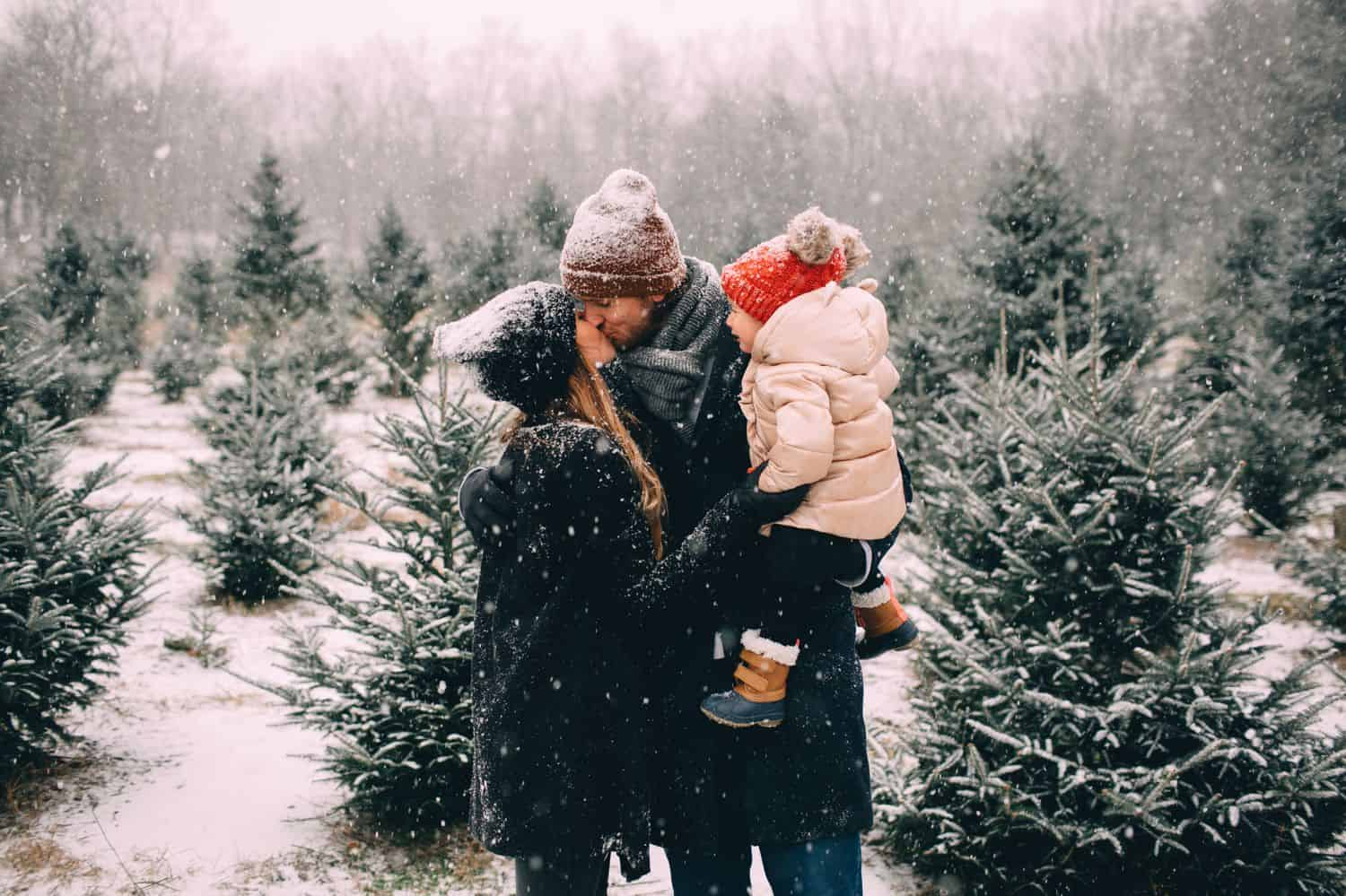 Two parents hold their toddler and kiss in a snowy field overlooking a Christmas tree farm.