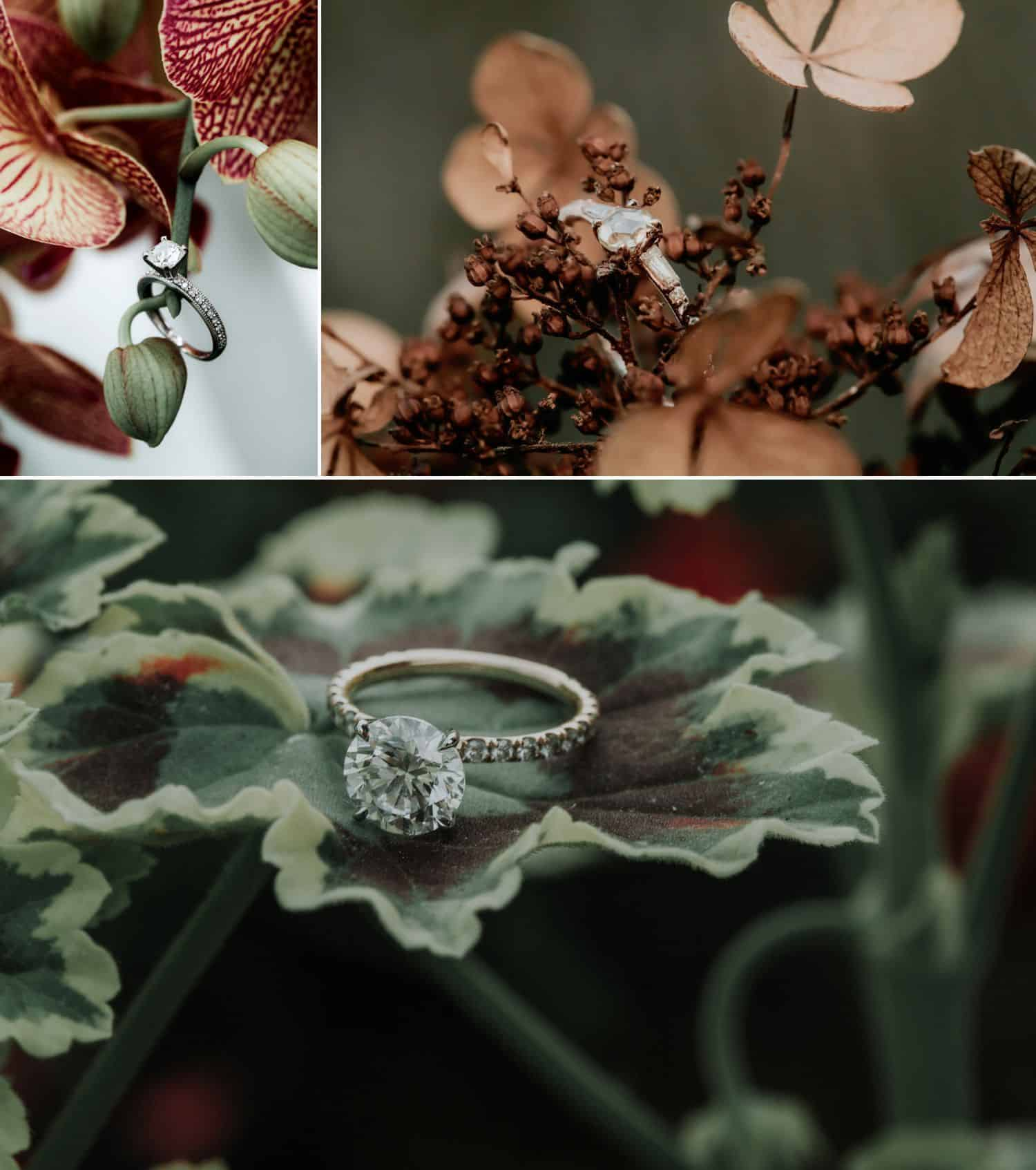 Get inspired by 35 stunning wedding ring photographs, then learn the ins and outs of making them with our how-to tips!