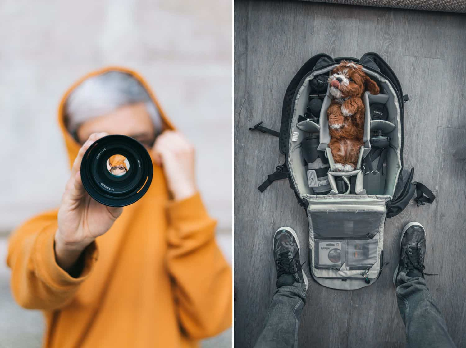 A person in an orange hoodie holds a lens in front of their face. A puppy lies in a section of a camera bag.