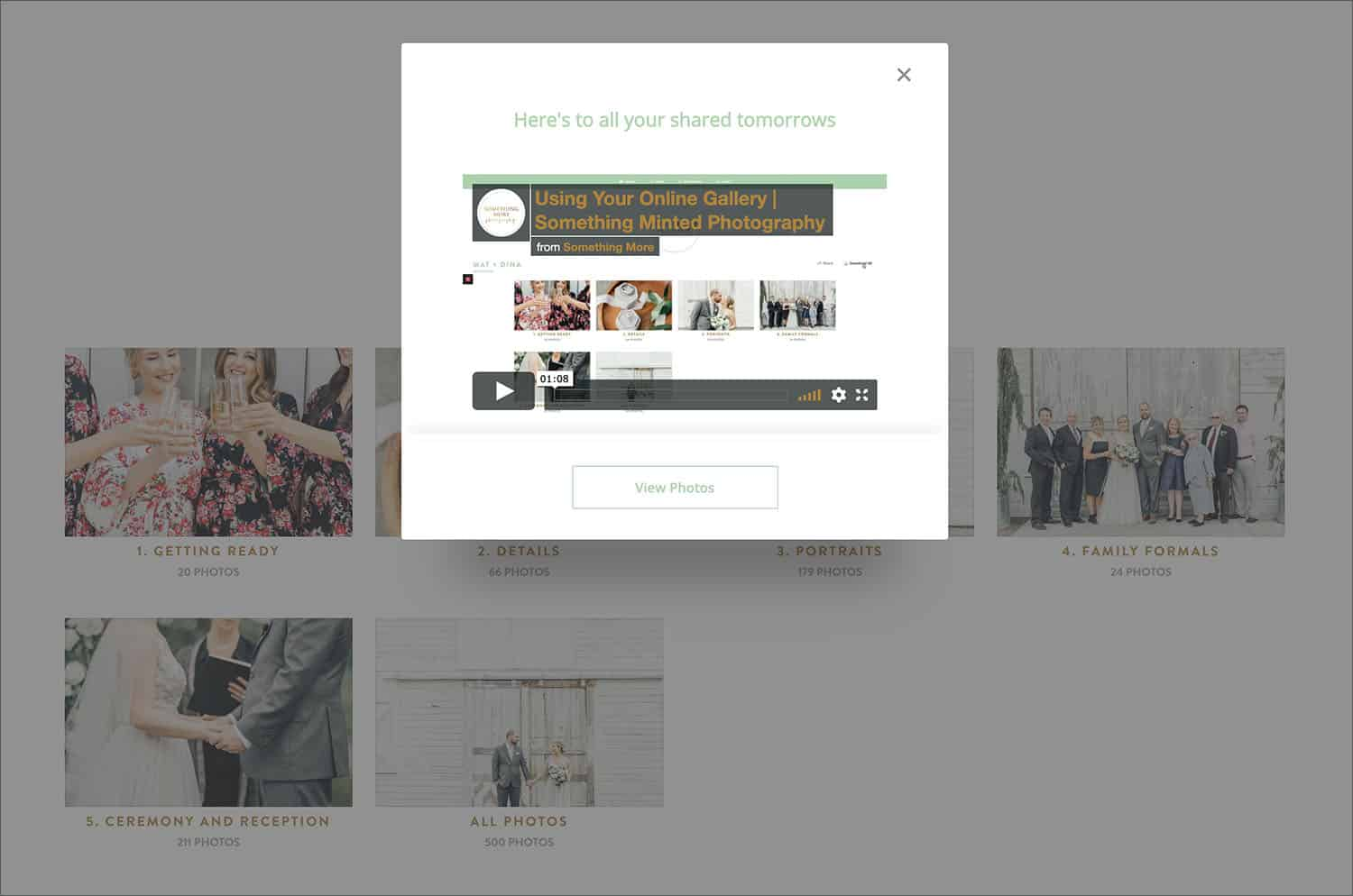 Here, Shelby Schmidt embeds her customized ShootProof gallery tour into her client's gallery homepage