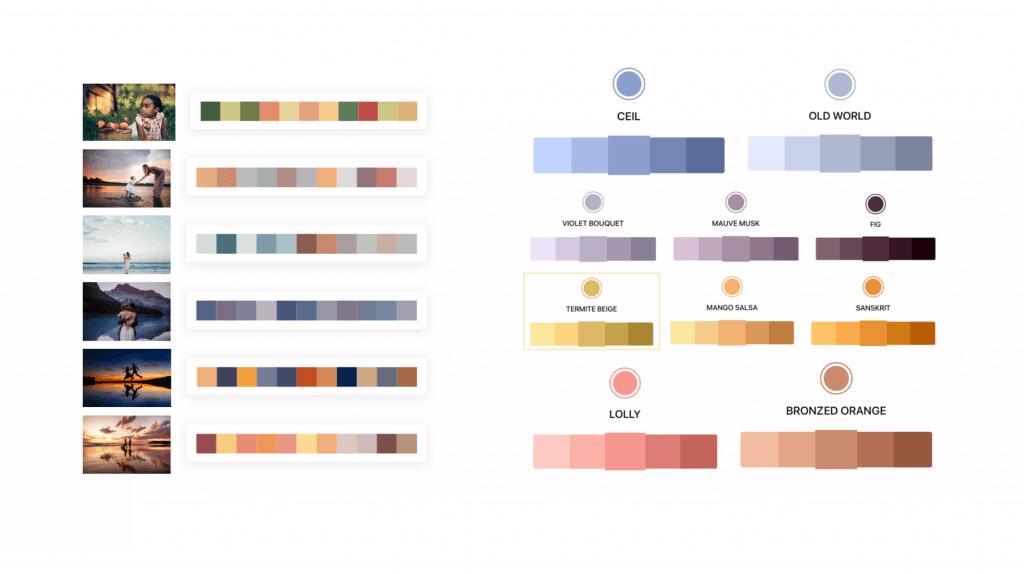 Photography color palette exploration