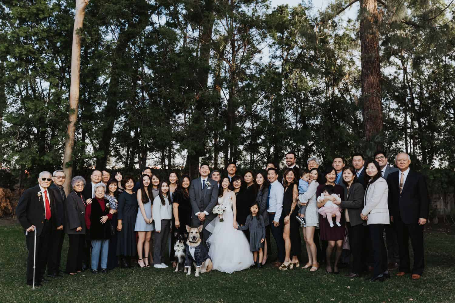 Huge family portrait in the forest during a wedding