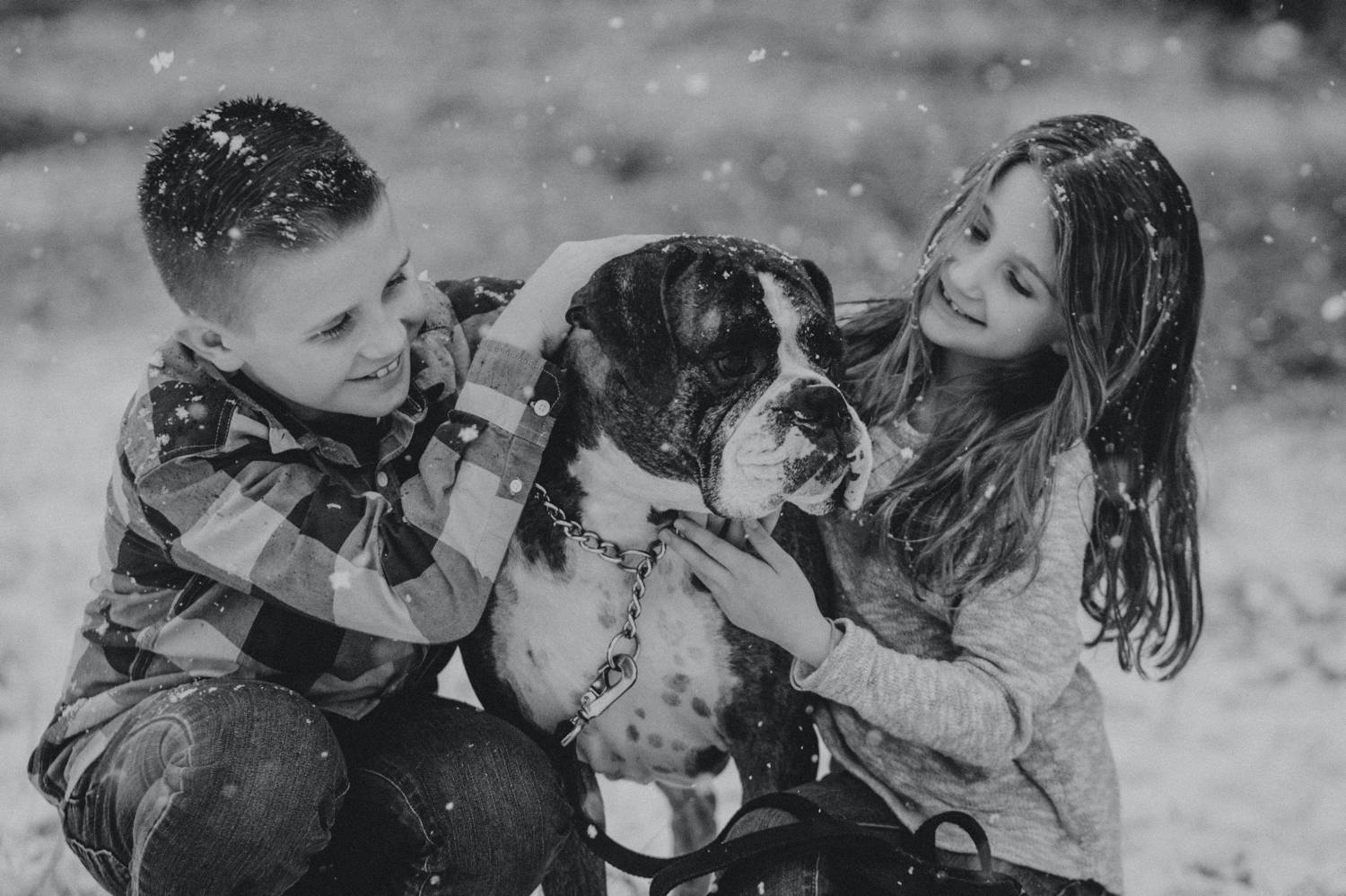 In this black and white photo by Nicole Nero Studio, a young boy and young girl kneel in falling snow with their Boxer dog between them. Christmas Mini Session: Ideas Families will ADORE!