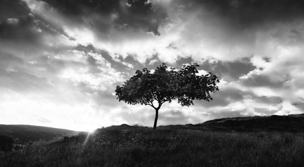 Fine art landscape photo in black and white by Joshua Wyborn