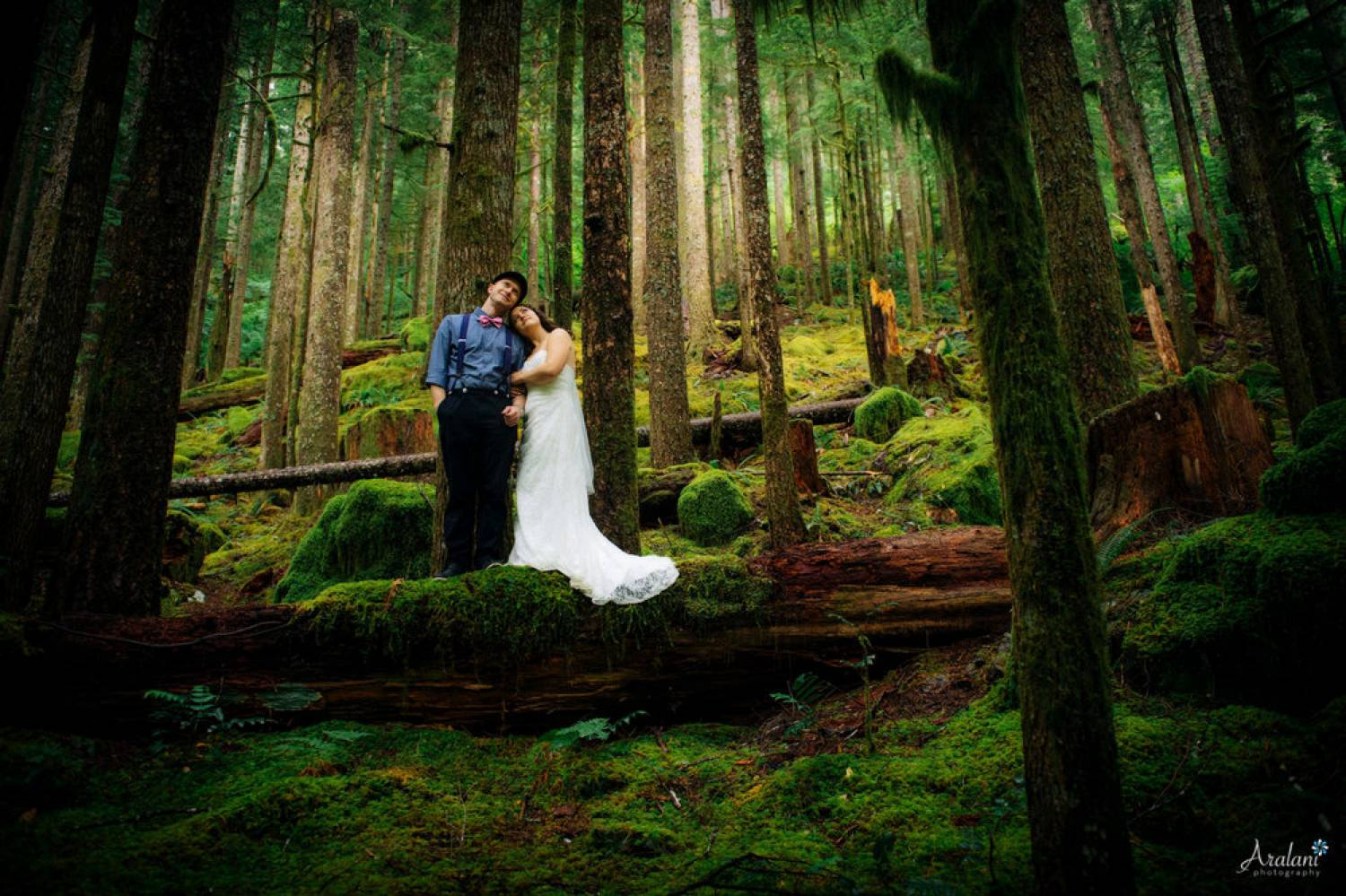 Ara Roselani's portrait of a bride and groom standing on a mossy, fallen log in the middle of a pacific northwest forest.