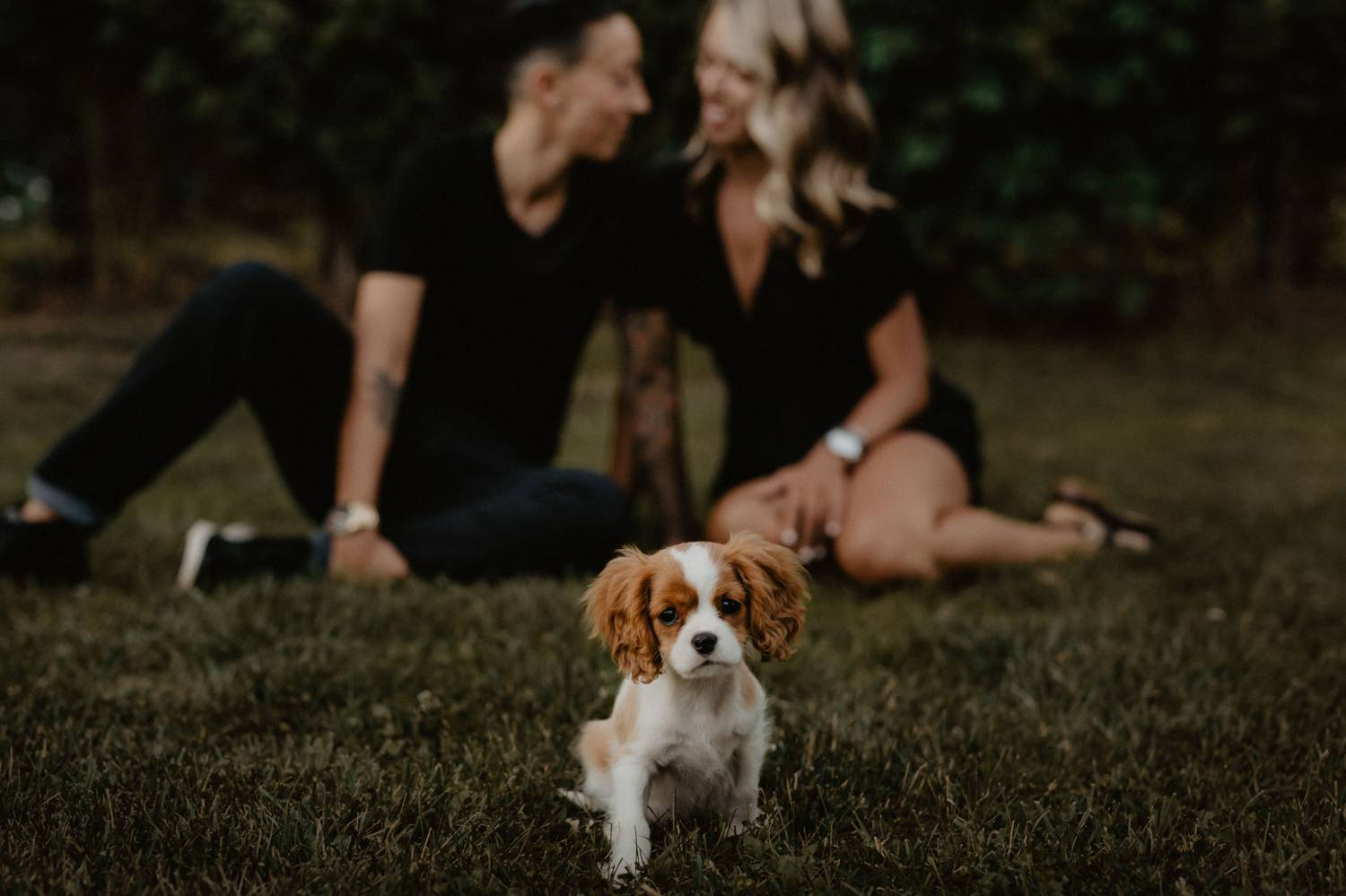 A queer couple sits on the grass in the background as the camera focuses on their spaniel puppy who sits in the foreground