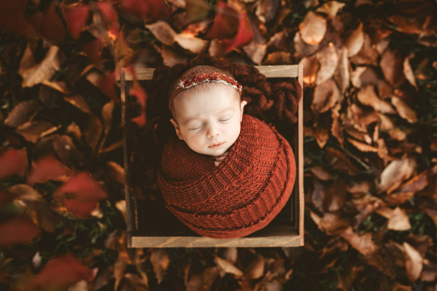 Fall newborn baby photo outside in the leaves