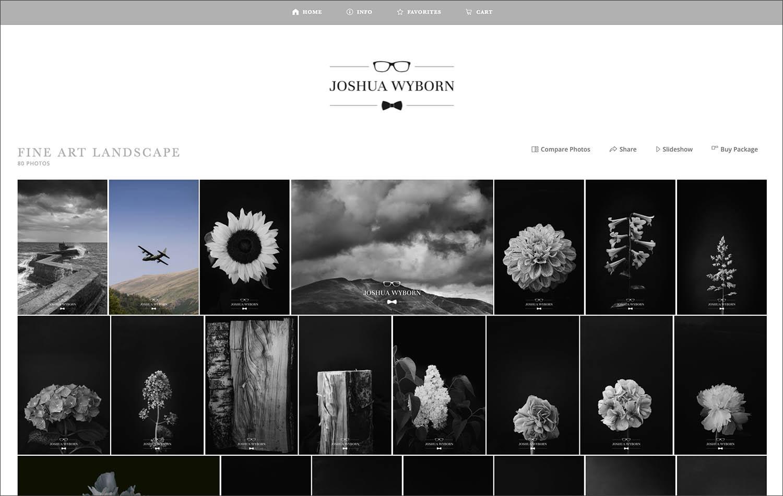 A screenshot of Joshua Wyborn's ShootProof gallery where he sells his fine art prints online.