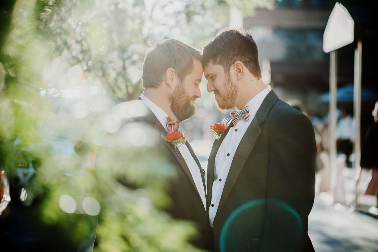 Two grooms stand forehead to forehead with sun flare highlighting the foliage around them.