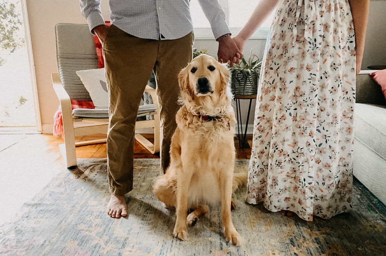 FaceTime photo of a couple holding hands over their golden retriever dog