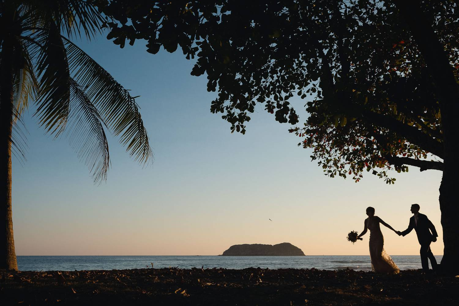 A photograph by Kevin Heslin depicts the sillhouettes of newlyweds through palm trees as they walk along a beach at sunset.