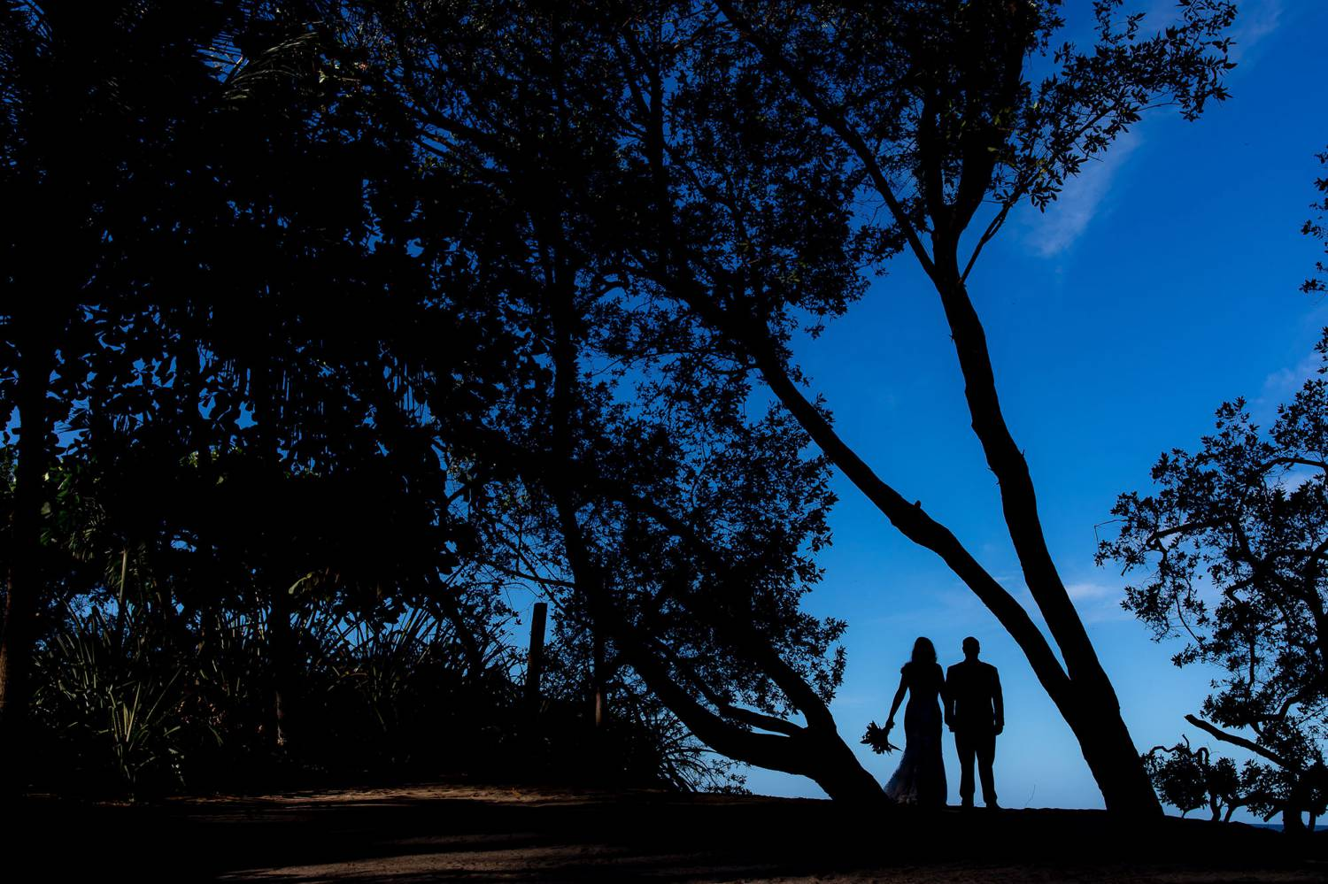 In this photo by Kevin Heslin a wedding couple is silhouetted by a deep blue sky as they pose between overgrown trees on a beach.